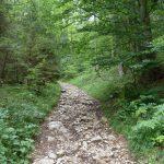 Weg zur Zwieselhütte