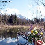 Aue im BGL, Fokus auf Blumenstrauß, im Hintergrund der Untersberg