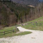 Weg zur Weißbachschlucht