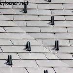 Dach von der Alpinen Naturschau