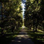 Allee im Park Hellbrunn
