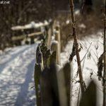 Zaun mit Schnee am Thumsee