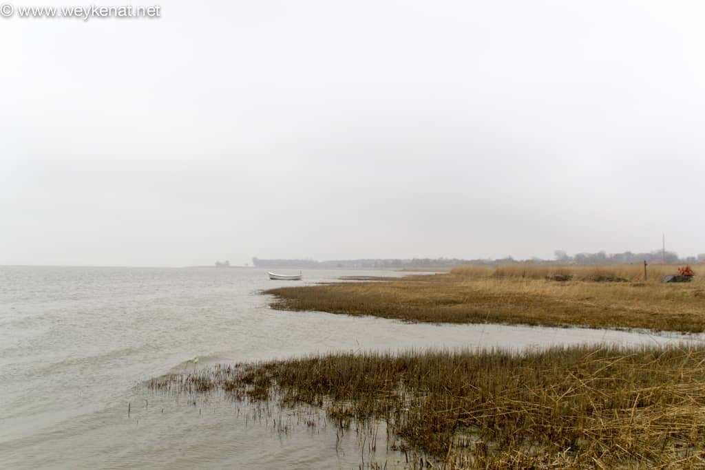 Nebel am Bodden – tristes Wetter am Bodden