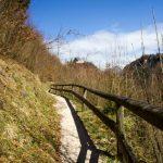 Weg mit Blick auf die Ruine Karlstein