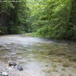 Langzeitbelichtung Grabenbach - Piding