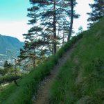 schmaler Weg beim Waxriessteig