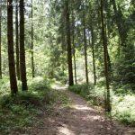 Rundwanderweg – Kendlmühlfilzen